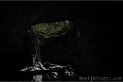 ledana2014-008